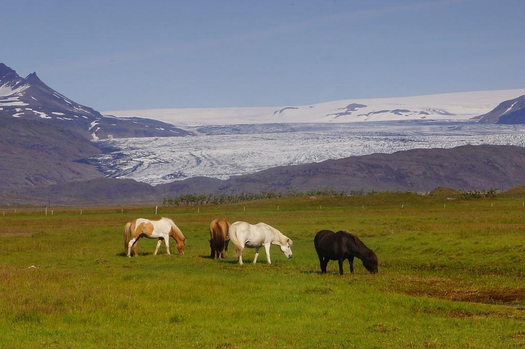 Iceland-2013-55.jpg