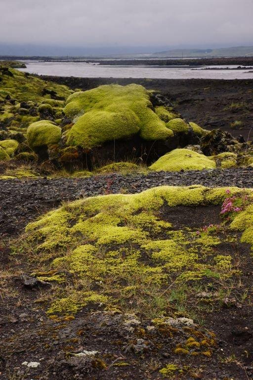 Iceland-2013-62.jpg