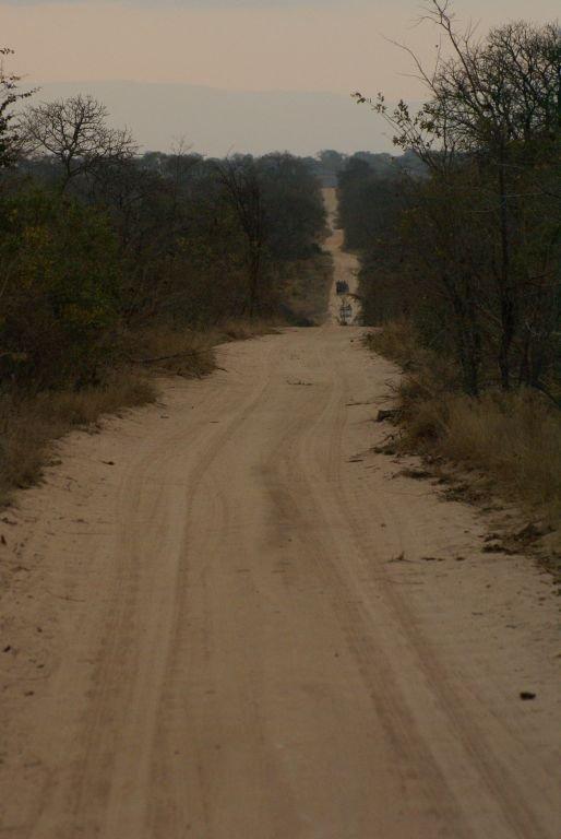 Eine gute Straße im Sabi Sand