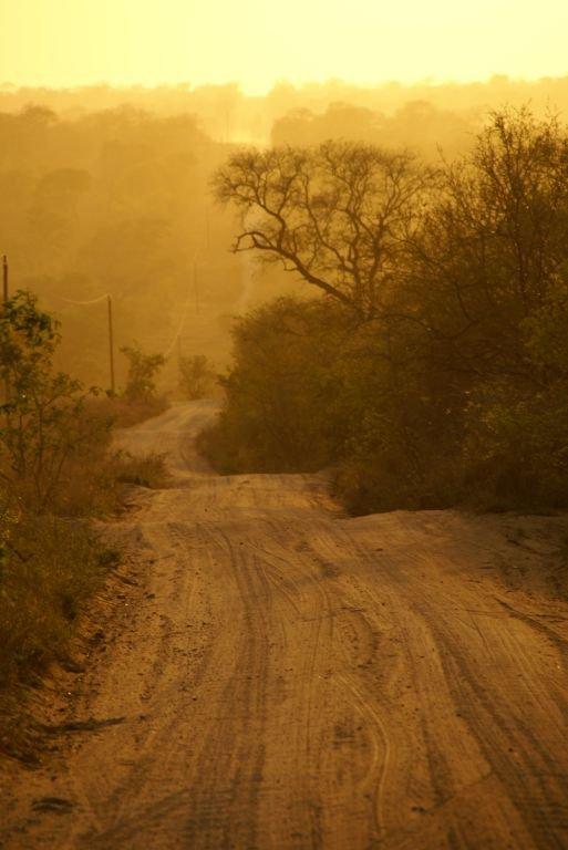 Morning Drive