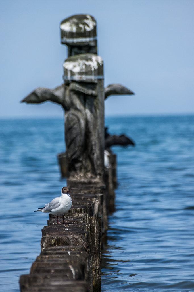 An der Ostsee